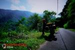 NNDR2012_052