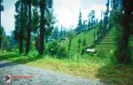 BROMOBROMODSCN1561