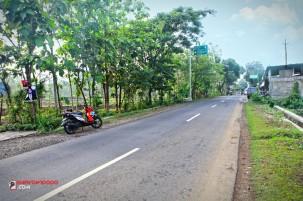 IMG_6428-copy